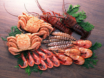 毛ガニなどの海産物