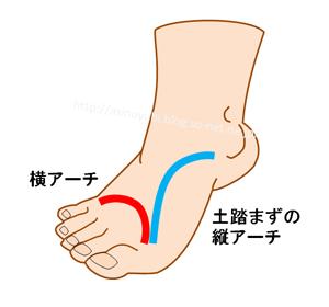 足の裏のアーチ